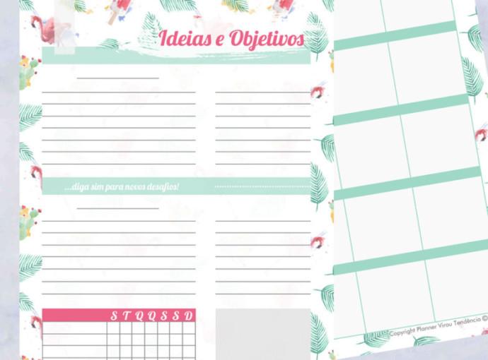 Planner 2019 para Imprimir - planner completo para download para ajudar no planejamento, organização no dia a dia para atingir seus objetivos em 2019.